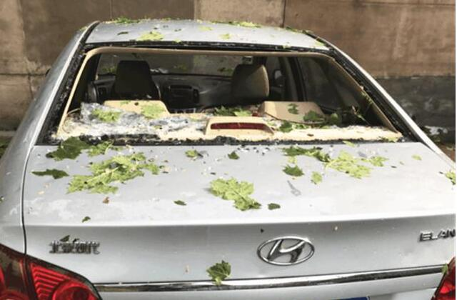 一场冰雹,砸开汽车品牌遮羞布,这些车系加强防范!