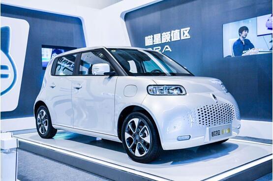 新能源汽车下乡 市场下沉是否能够带动农村汽车销量增长?